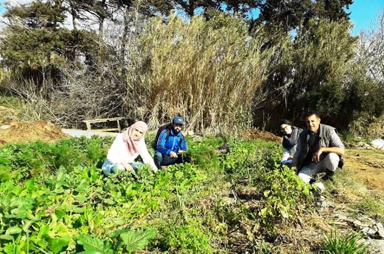 Teaser Du Jardin Partagé à la Solidarité paysanne en Algérie