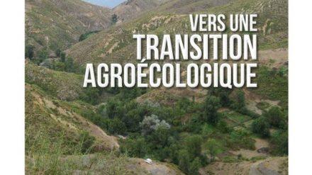 الفلاحة  شبه الحضرية- نحو مرحلة انتقالية للفلاحة الطبيعية
