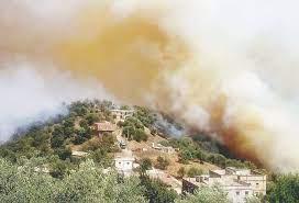 مساعدة الفلاحين المتضررين من حرائق بلاد القبائل