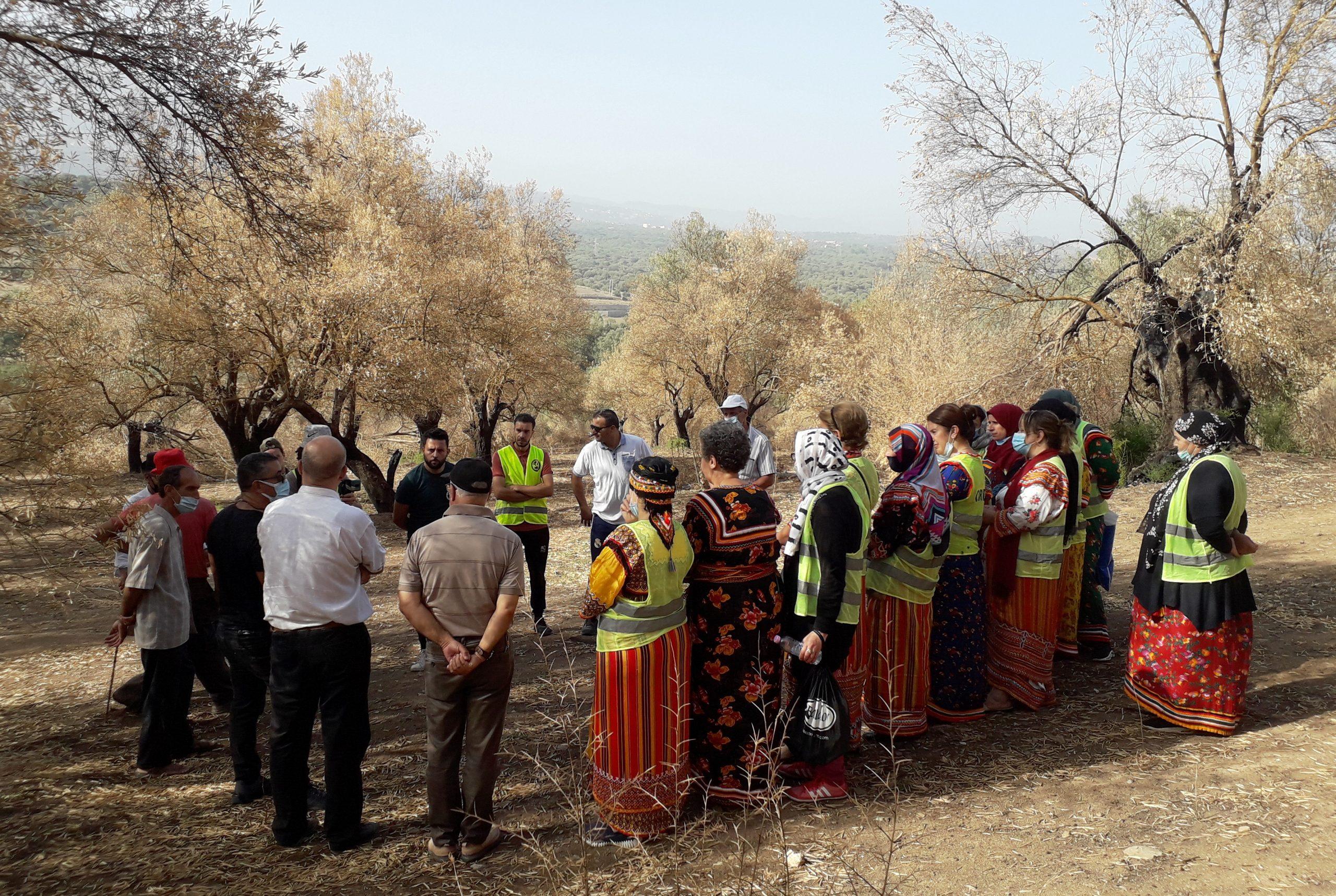 Actions d'aide aux agriculteurs de montagne