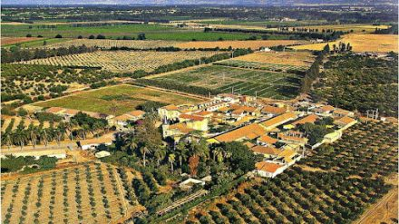 Pratiques agroécologiques dans la Mitidja